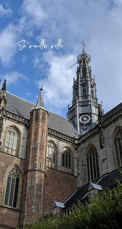 La Grote Kerk ou St Bavo Kerk à Haarlem