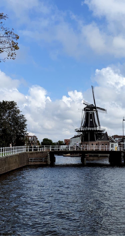 Le moulin Adriaan de Haarlem